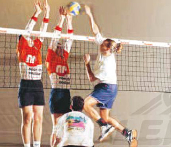 Filets_de_volley-ball